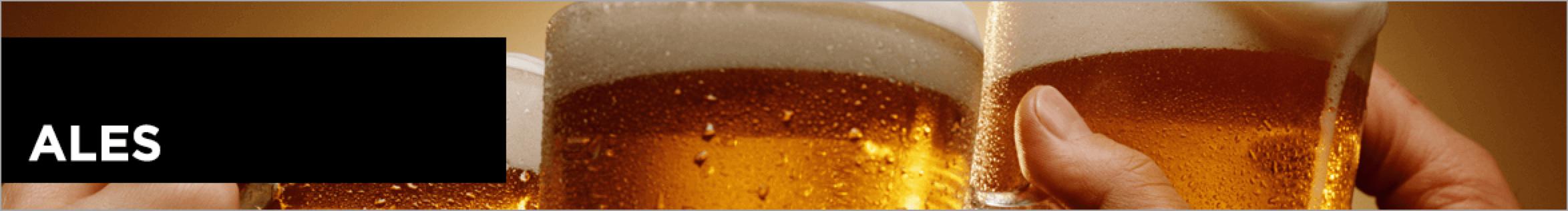 Beer 101 Guide Ales