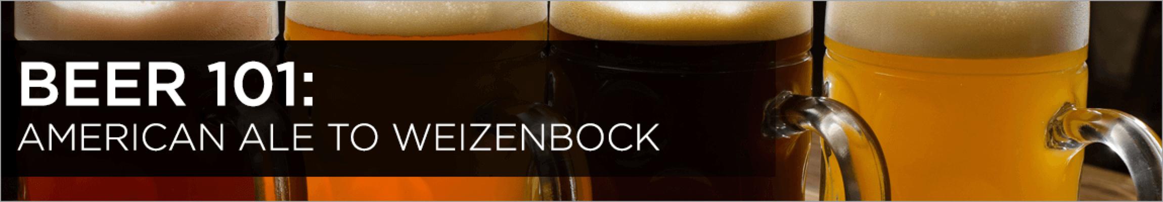 Beer 101 Guide